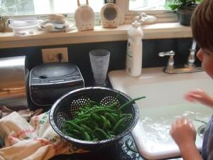 Freezing Green Beans 1, 8-5-10