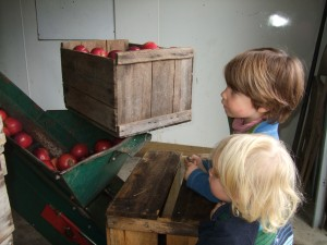 Cider-Making at Hope Orchards 3, 10-8-10