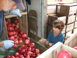 Cider-Making at Hope Orchards 4, 10-8-10