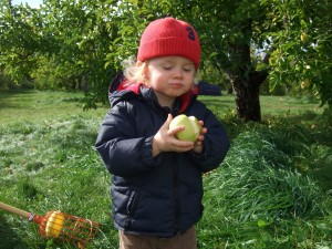 Ian eating apple