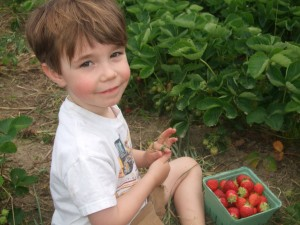 Connor smiling in Strawberry patch, June 2010