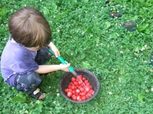 Connor washing strawberries in backyard 2, june 2010