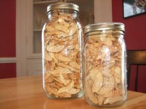 Dried Apples, Jan. 21, 2011