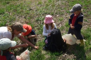 Picking Fiddleheads, May 7, 2011