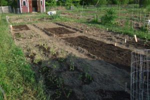 Garden just planted, may 2011