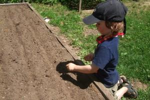 the big planting weekend part II