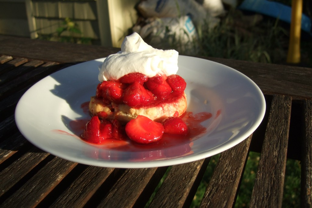 Strawberry Shortcake, July 2011