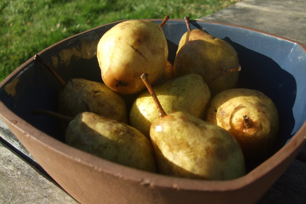 Pears 2011