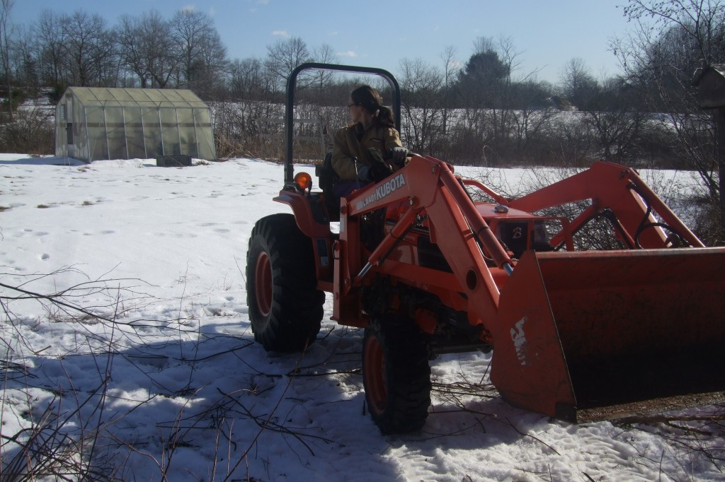 clearing our land, jan-feb 2012