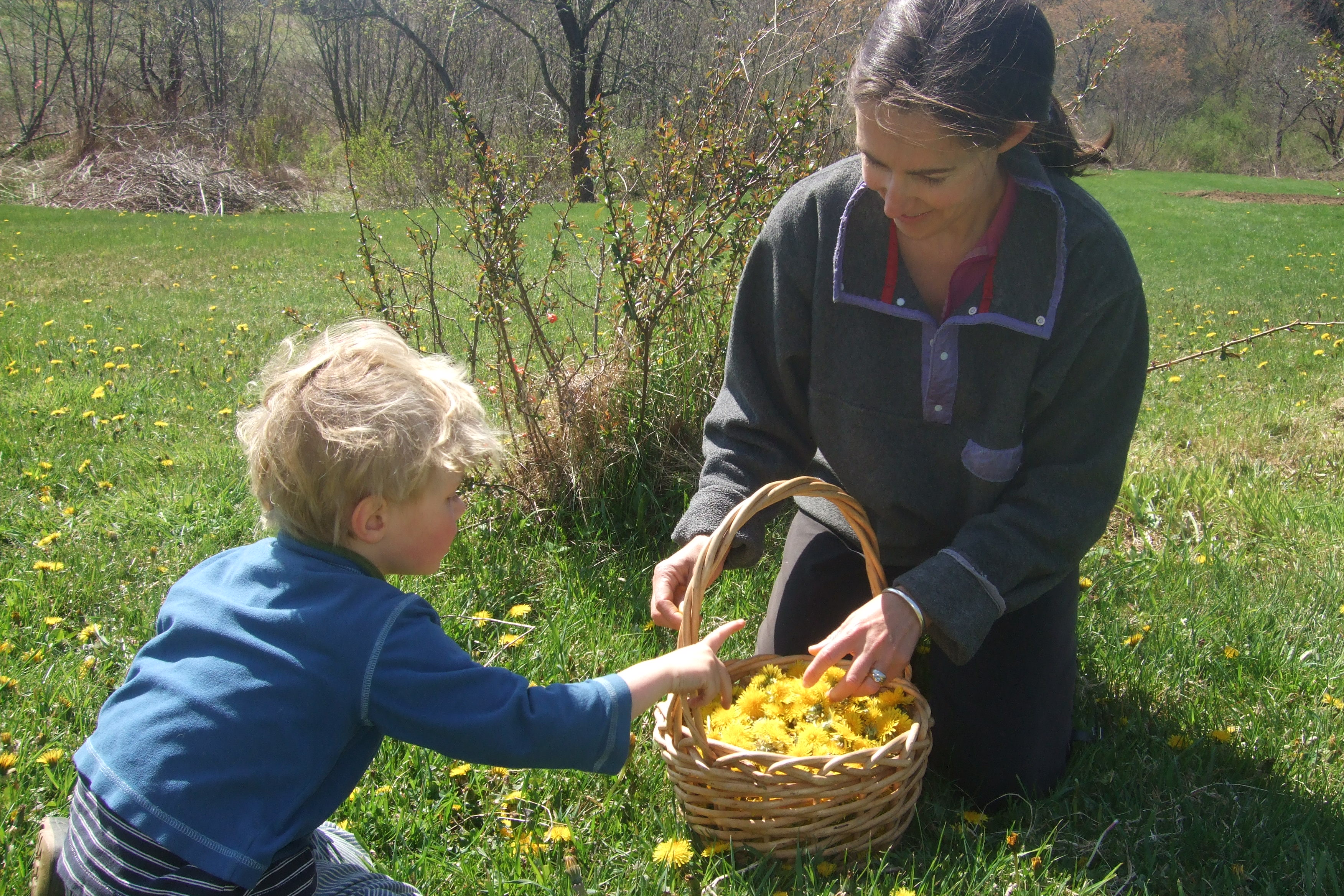 Me and Ian picking dandelions for jelly
