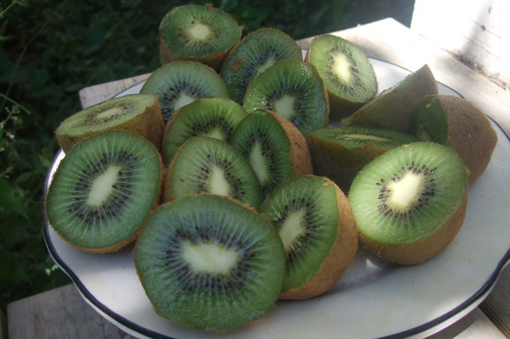 kiwis for jam for book