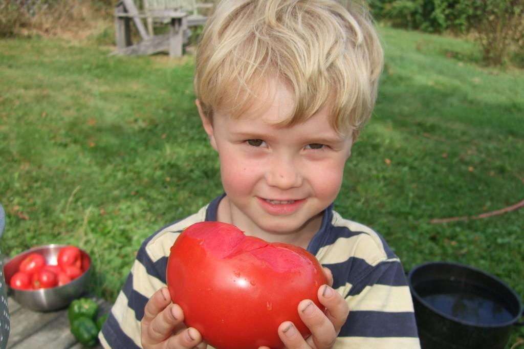 Ian and tomato
