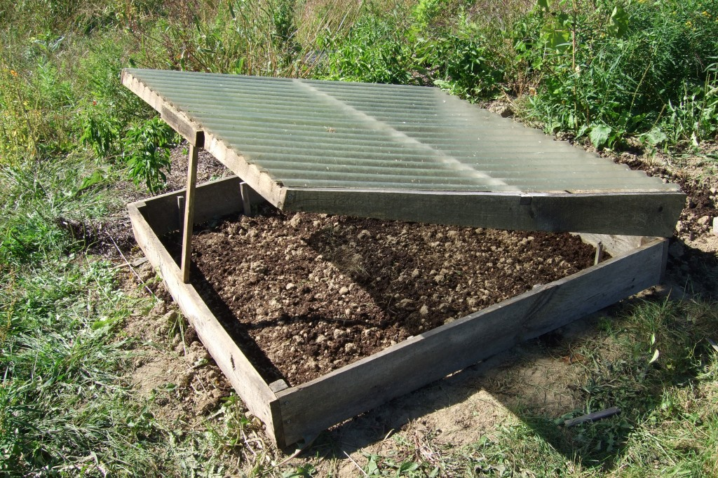 cold frame ready to plant