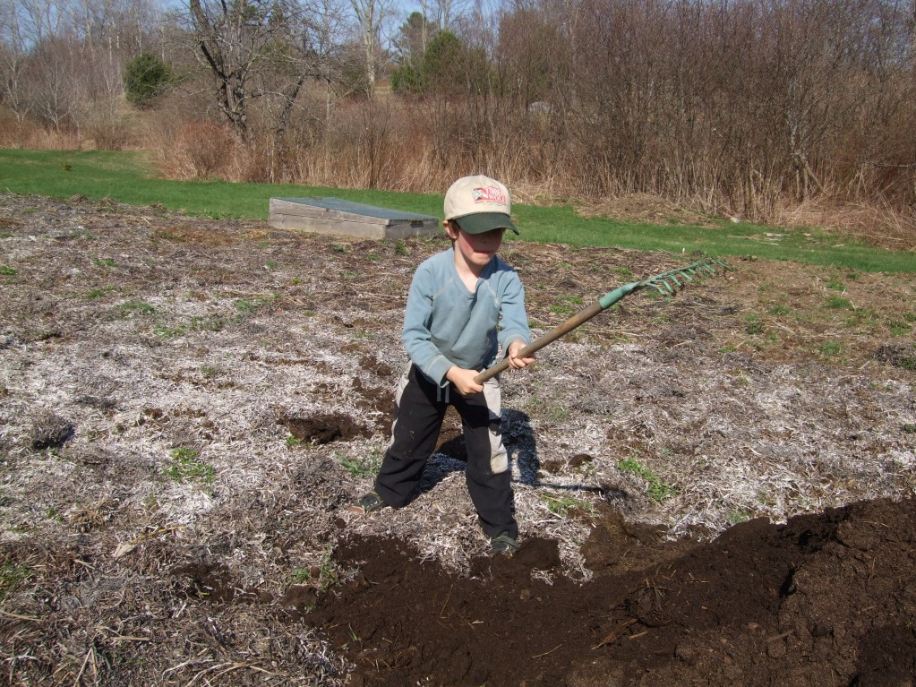 connor raking manure